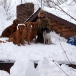 In Feb, 2007, the snow was so deep near Oswego, NY, that our Adirondac Goldens walked right up onto the roof.