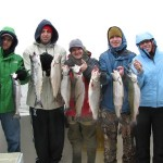 Part of a 4/16/11 catch 14 of brown trout, coho salmon, and rainbows.